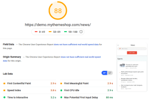 News Theme PageSpeed Insights Mobile Test