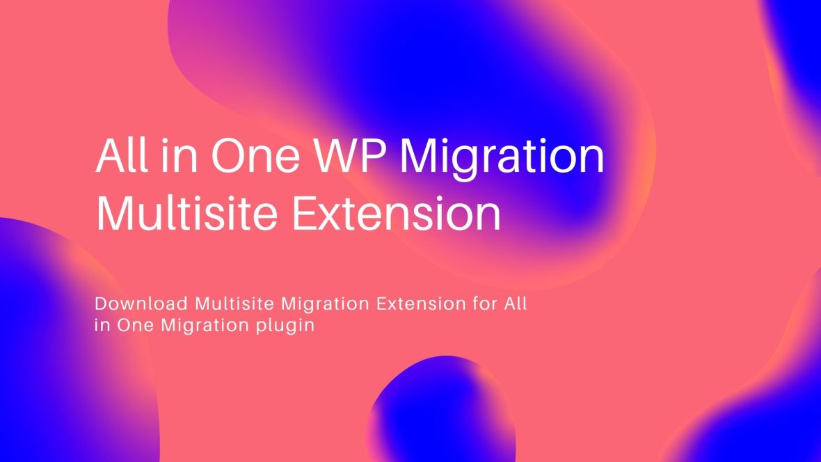 All in One WP Migration Multisite Extension