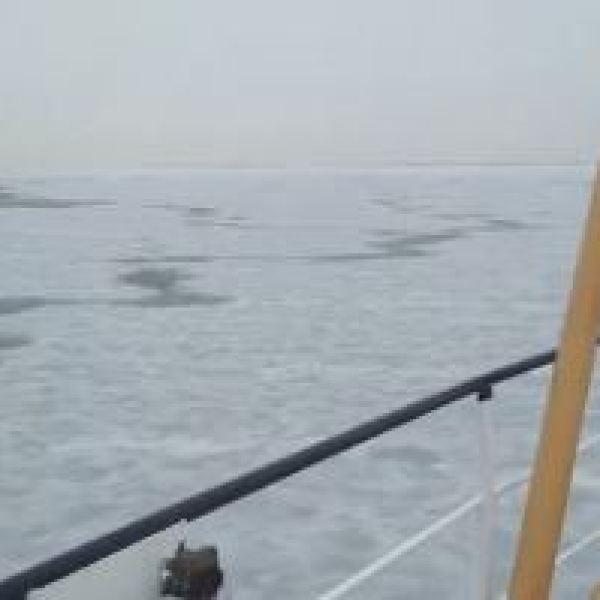 icy ocean_132383