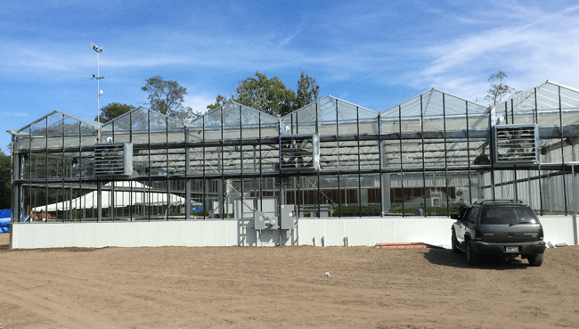 Hydroponic greenhouse_210422