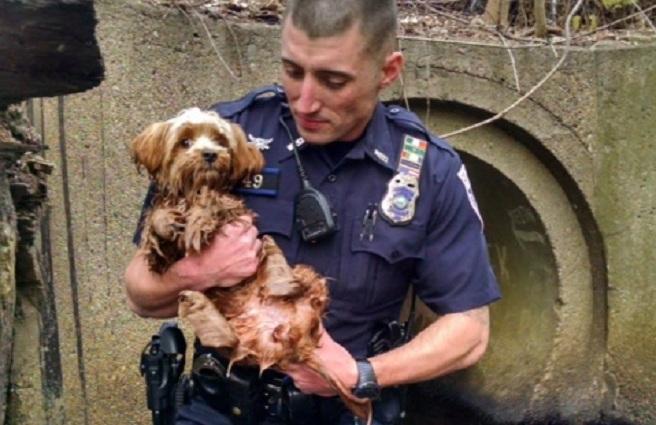 Woonsocket Police Officer Joseph Brazil dog rescue_297369