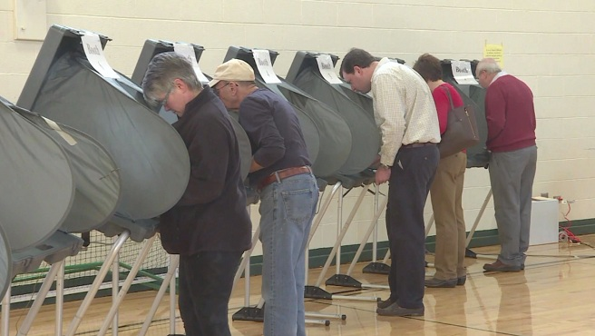 Super Tuesday voters_268280