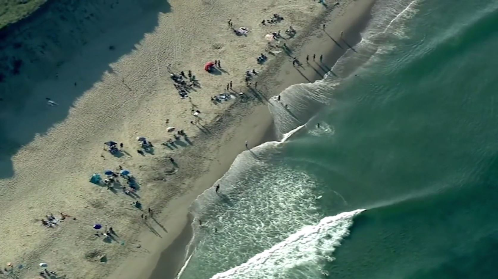Beach closed after shark spotted eating a seal   WPRI com