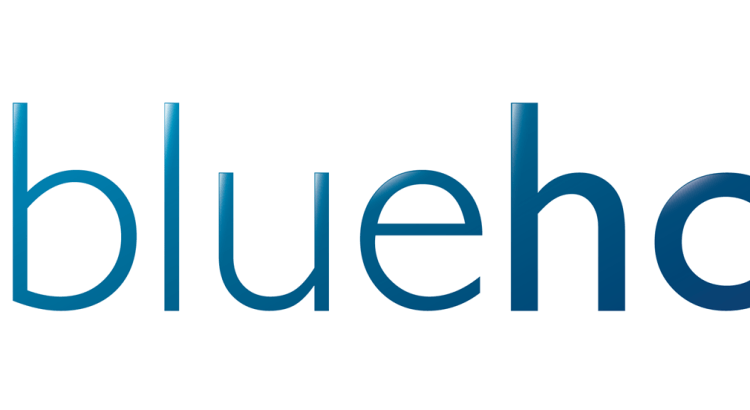 A review of Bluehost