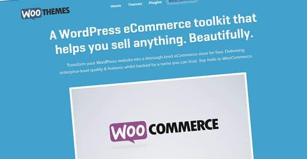WordPress Ecommerce: What to look out for?