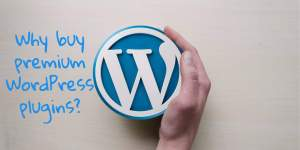 why buy premium WP plugins - Why You Should Buy Lifetime Wordpress Theme Packages