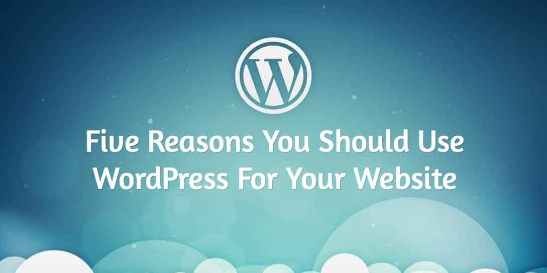 Five Reasons You Should Use WordPress For Your Website