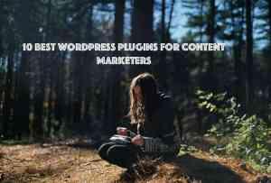 content marketing plugins 1 - Best WooCommerce Extensions Alternative
