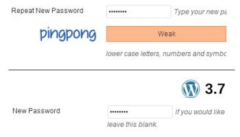 Should WordPress Include a Password Generator? – WordPress