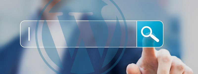 Improve the WordPress Search Function on Your Site