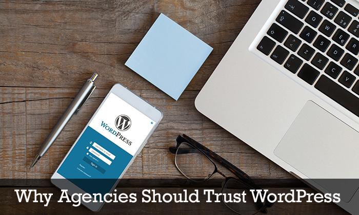 Why Agencies Should Trust WordPress