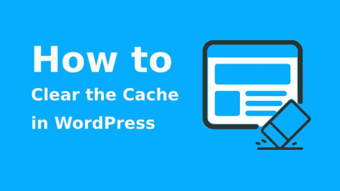 clear the cache in WordPress