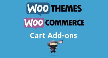 logo-woocommerce-cart-add-ons