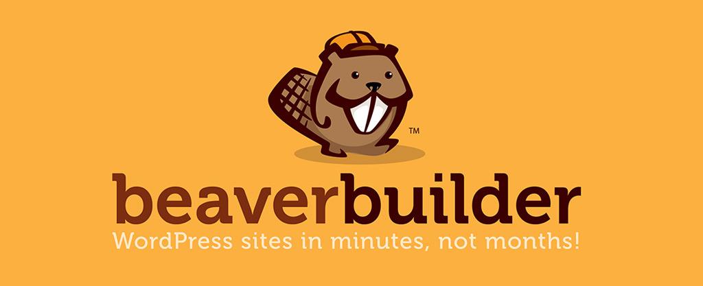 Beaver builder 49