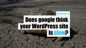EP05 Does google think your WordPress site is slow Dev Branch