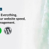 The Beginner's Guide to WordPress Hosting