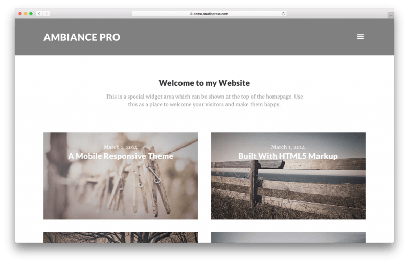Ambiance Pro WordPress portfolio theme screenshot