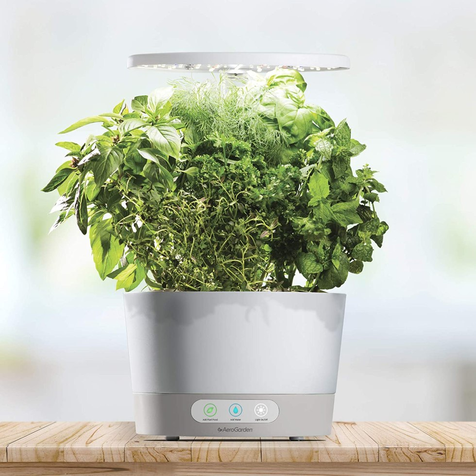 Indoor Garden kitchen gadget gifts