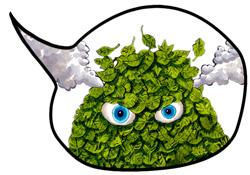 Compost-Bubble