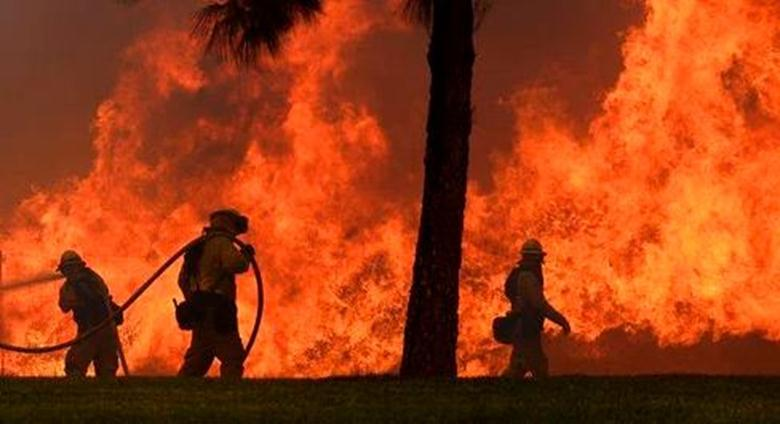 california_wildfires (Copy)_292148