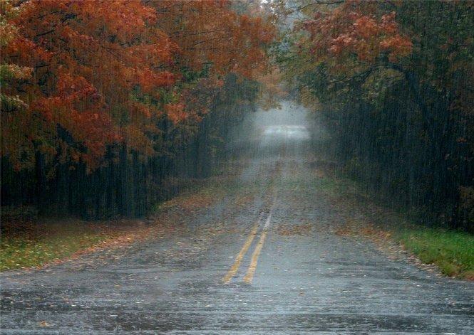 Fall Rain stock_301389