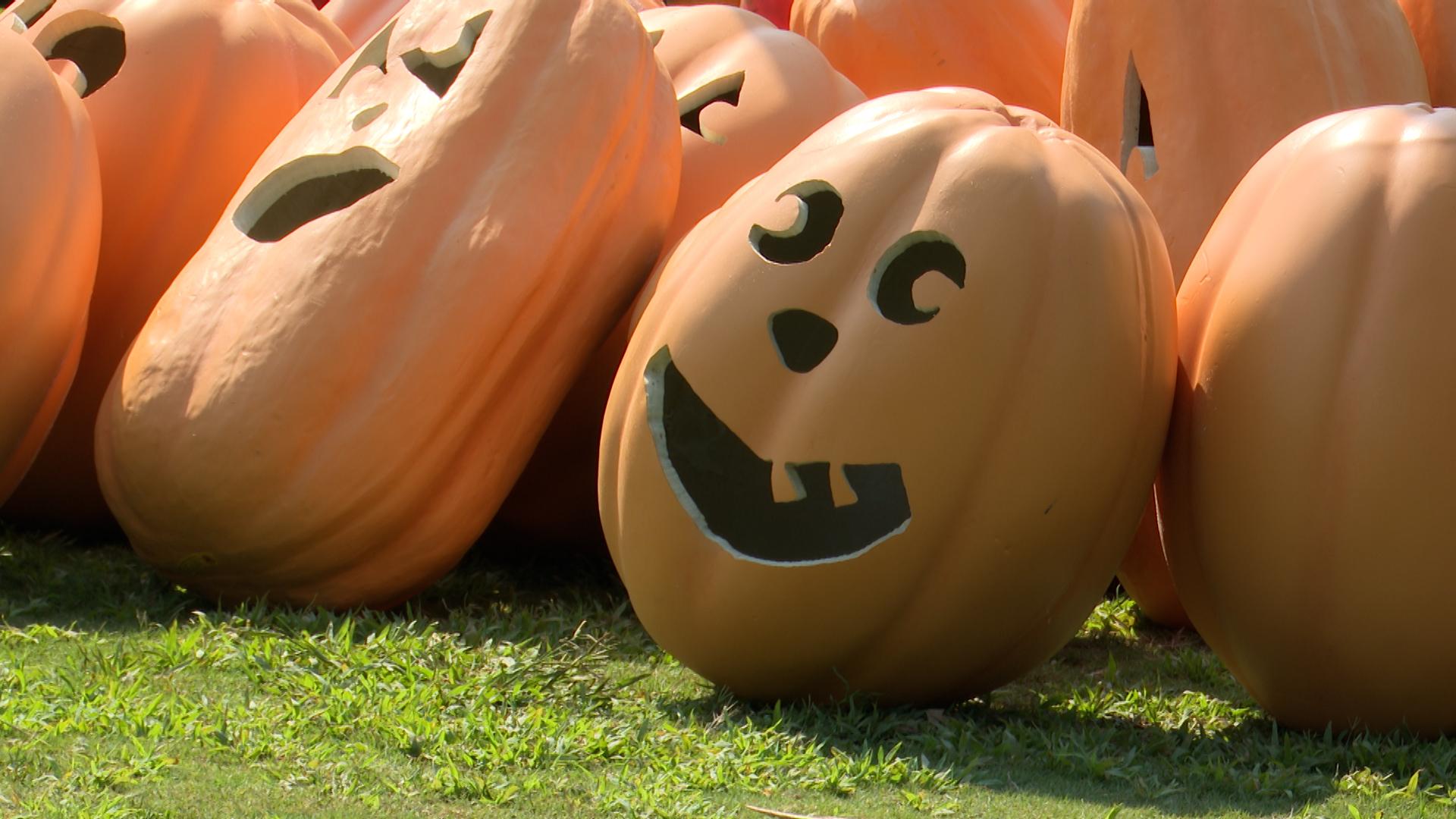 Callaway Gardens announcing Pumpkins at Callaway