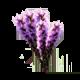 icon_flower%e0%b8%94%e0%b8%ad%e0%b8%81%e0%b8%aa%e0%b8%b8%e0%b9%88%e0%b8%a2