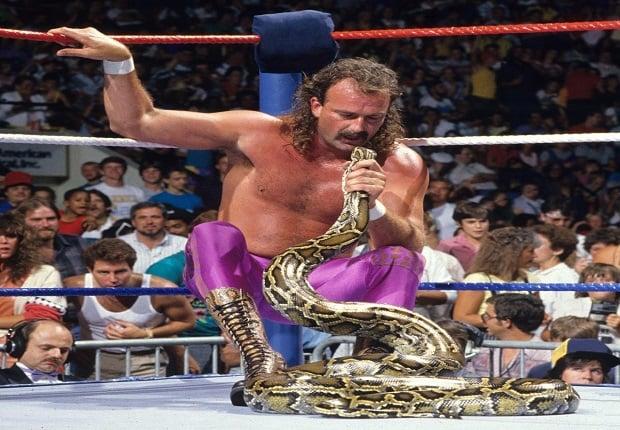 Jake The Snake Robert