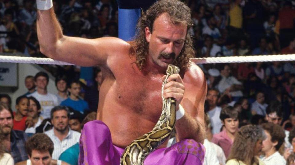 Jake The Snake Roberts WWE