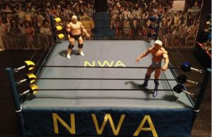 NWA legends in ring