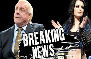 Ric Flair and Paige