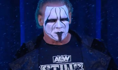Wrestling legend Sting, makes shocking debut with AEW