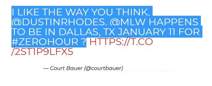 Court Bauer