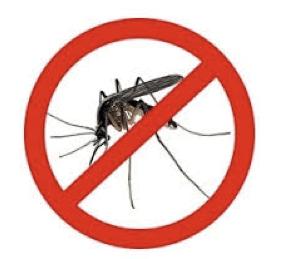nomosquito