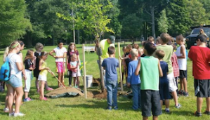Jamestown Summer Playground Program Hosts Tree Day Event at Allen Park