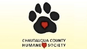 [LISTEN] Community Matters – Hannah Braun with the Chautauqua County Humane Society