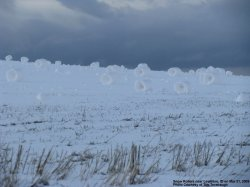Snow Rollers - Click for larger image