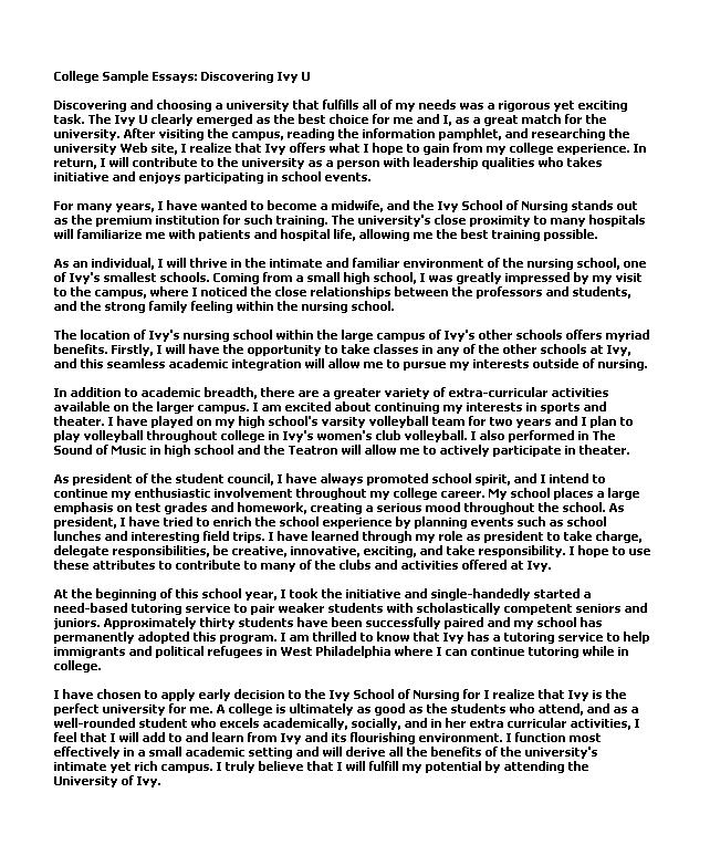 College Essay Examples Nhs Essay Examples Essay Sample Sample College Essay  Writing Samples