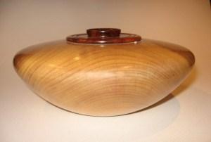 Mrytle wood & Manzanita 02