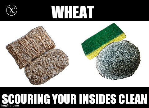 wheatscourer