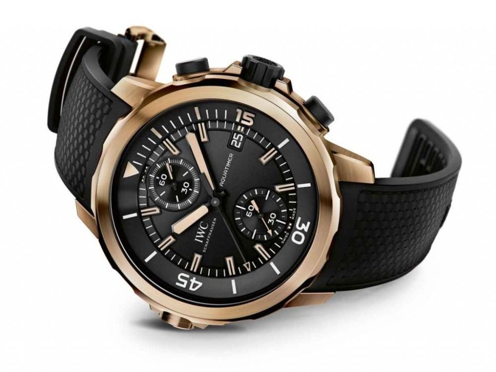 IWC-Aquatimer-Chronograph-Charles-Darwin-IW379503-2-e1388509981373