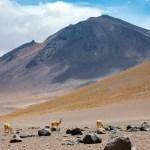 Krótki przewodnik po Chile