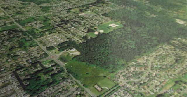 LBA Woods from Above