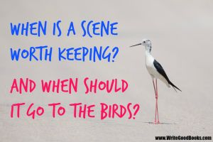 Break down your novel and examine each scene. Are there any you should cut? Which ones?