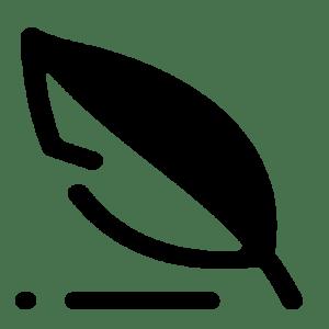 write invisible icon transparent