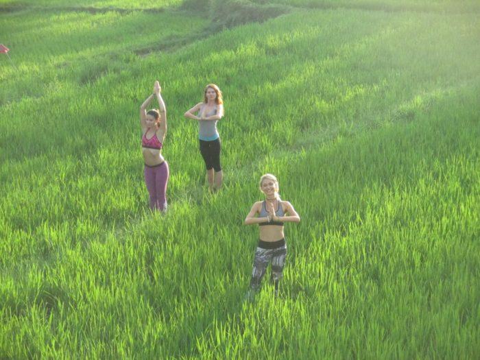 rice fields, yoga, bali, ubud
