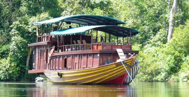 boat, kalimantan, indonesia, orangutans, rungan river, river,