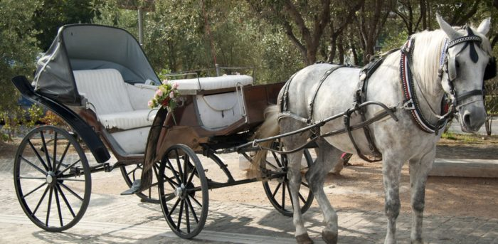 horse, carriage, horse and carriage, bucket list