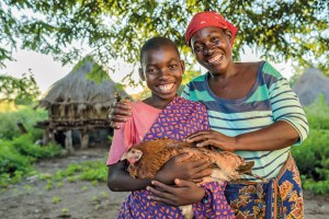 chickens and eggs, christmas gift, world vision australia, world vision