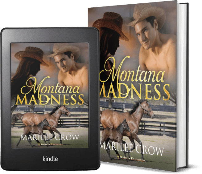 Montana Madness 2 covers